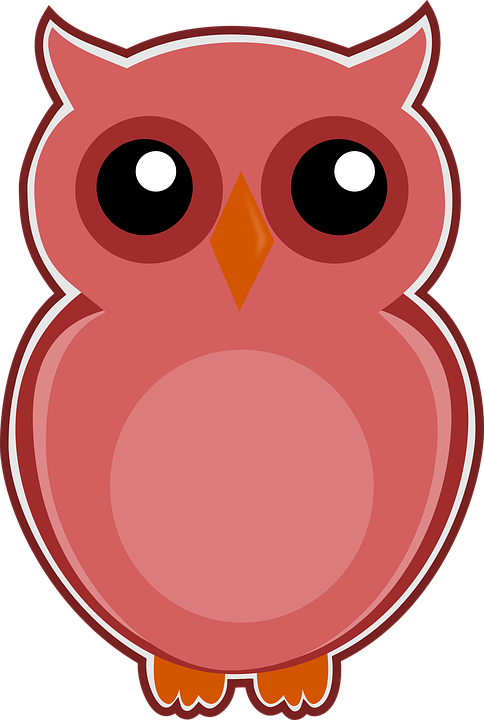 Owl Pink Bird Free Image On Pixabay