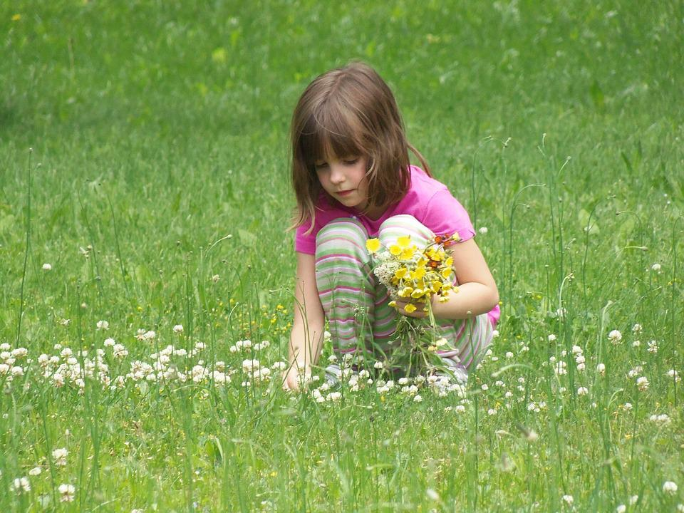Free photo: Picking Flowers, Girl, Child - Free Image on ...