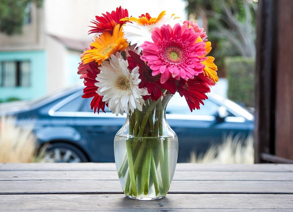 Flower Vase Flowers Free Photo On Pixabay