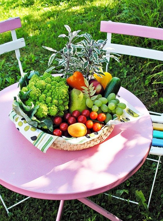 Free photo Vegetables Garden Table SummerFree Image on