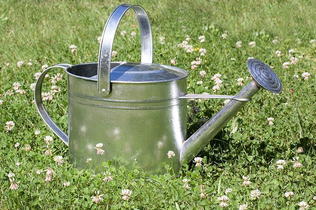 Free photo watering can sprinkler vessel free image on pixabay 397290 - Sprinkling cans ...