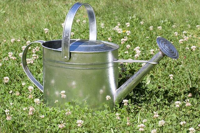 Free Photo Watering Can Sprinkler Vessel Free Image