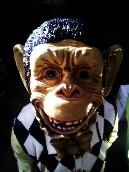 95+ Jenis Gambar Monyet Seram Paling Bagus