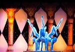 circus, contortion