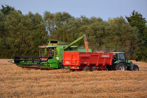 В Ростовской области идет к завершению летняя страда, сбор зерна перевалил за 9,5 миллионов тонн