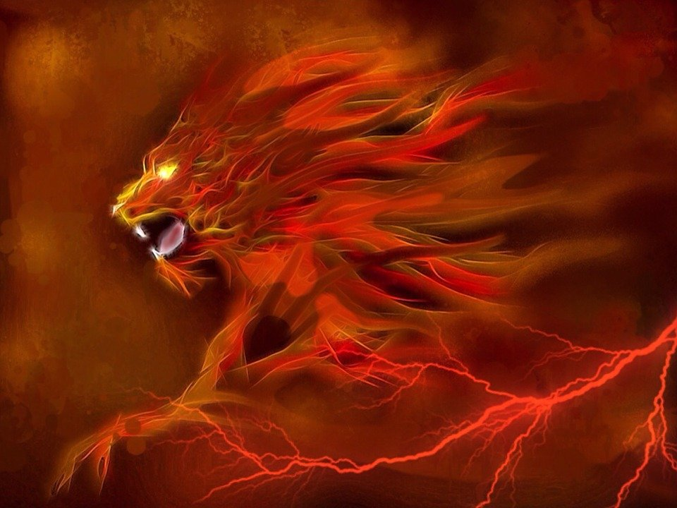 Fire Lion Related Keywords & Suggestions - Fire Lion Long Tail ...