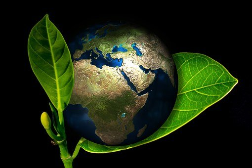 Earth, Globe, Birth, New, Arise