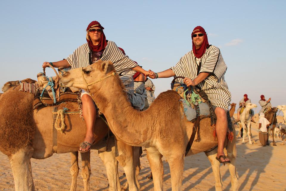 Camels, Desert, Journey, Arabic, Sand, Safari, Tourism
