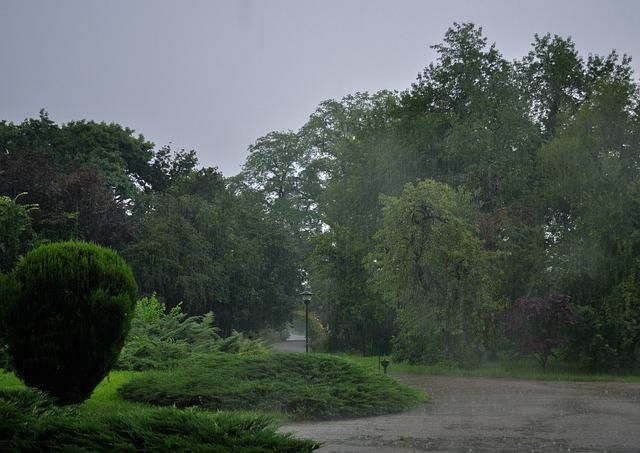 Rain Rainy Day 183 Free Photo On Pixabay
