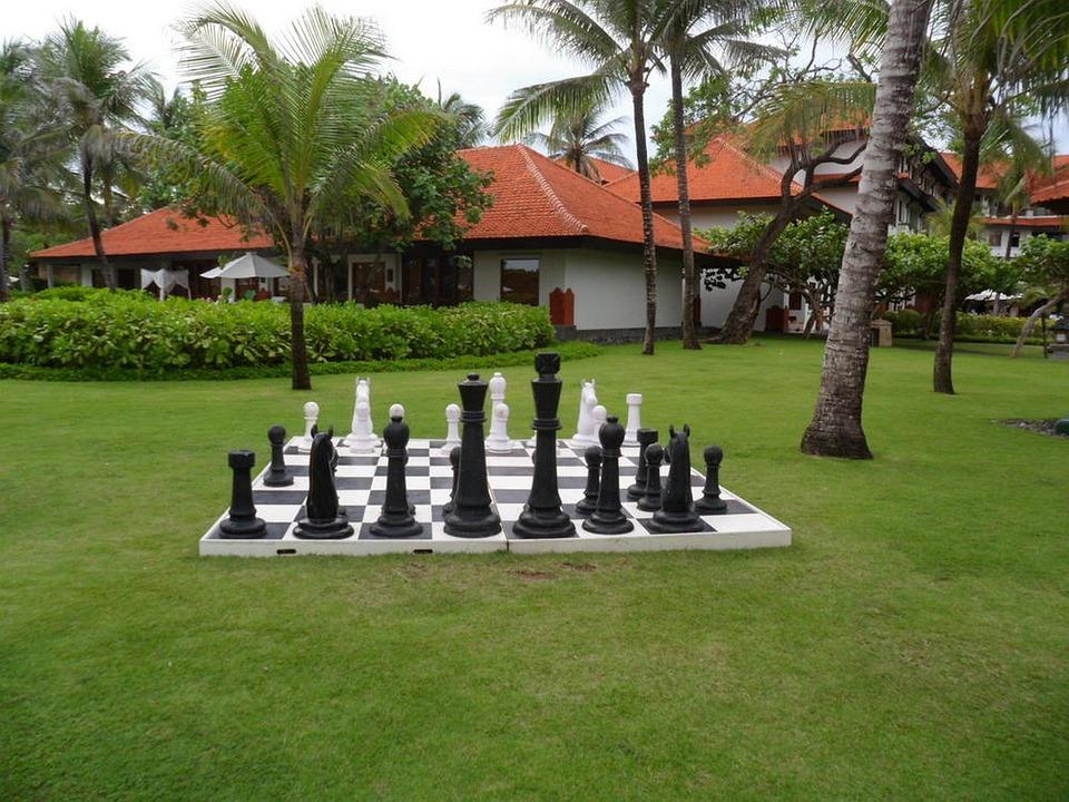 schach garten spiele