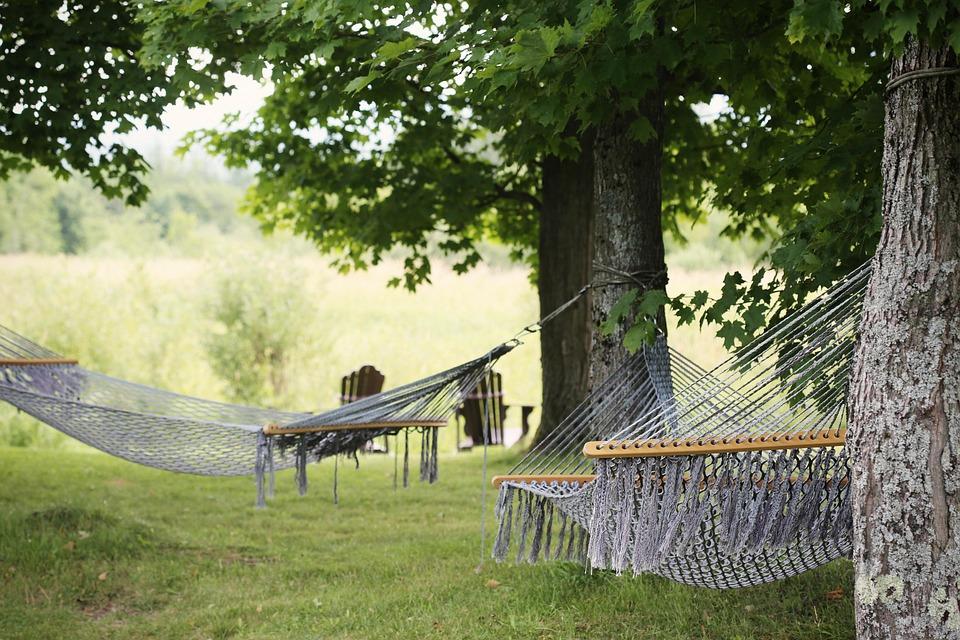 Hammocks, Trees, Summer, Relaxation, Resort, Relax