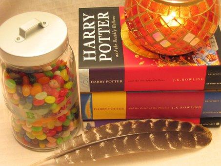 Harry Potter Books Fantasy Wizard Hallowee
