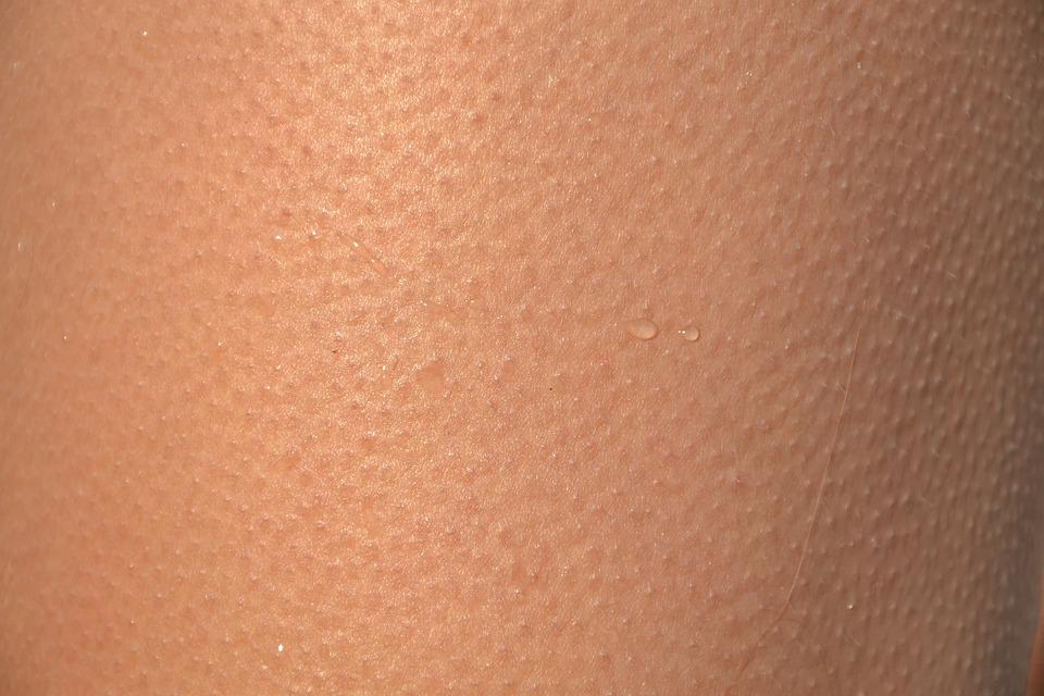 Skin, Shell, Gęsia, Goosebumps, Goose Skin, Cold