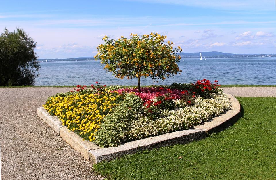 Flores Cama De Forma Foto Gratis En Pixabay