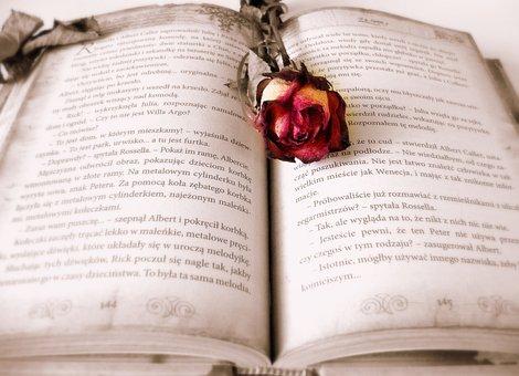 Buku, Membaca, Kisah Cinta, Cerita, Roma
