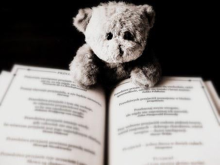 Bear, Toy, Animal, Teddy, Child, Book