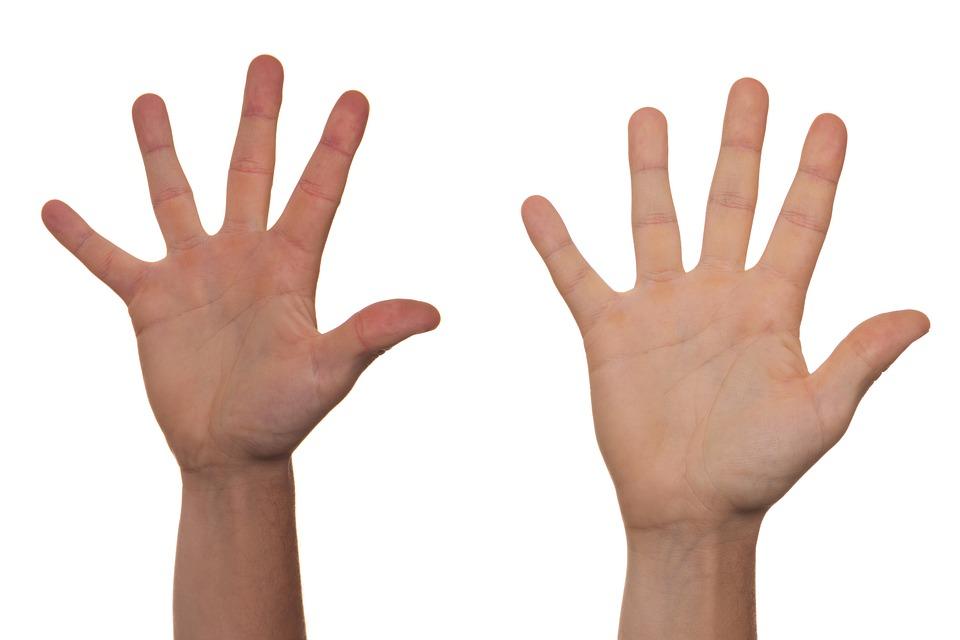 Volunteer, Voluntary, Guide, Guiding, Grip, Handle