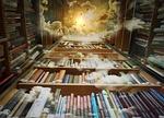 biblioteka, niebo, ptaków