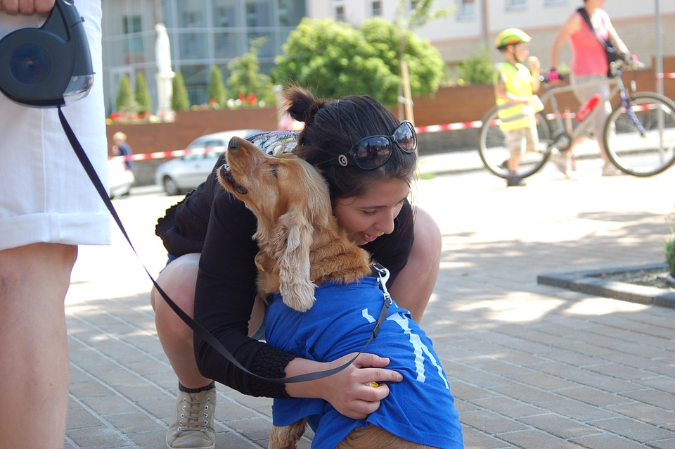 Dog, Host, Hug, Service, Pecel