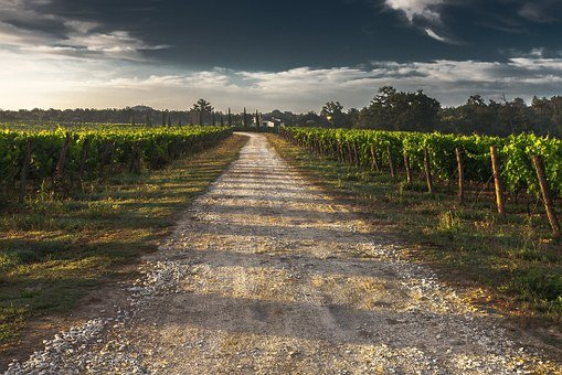 Country Lane, Gravel Road, Tuscany, Way