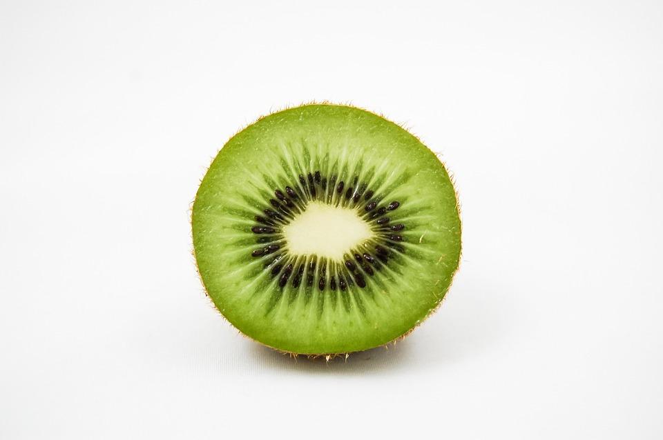 kiwi  free images on pixabay, Beautiful flower