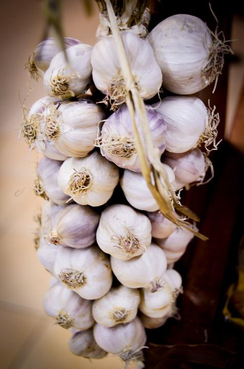 Garlic Natural Antibiotic - Free photo on Pixabay