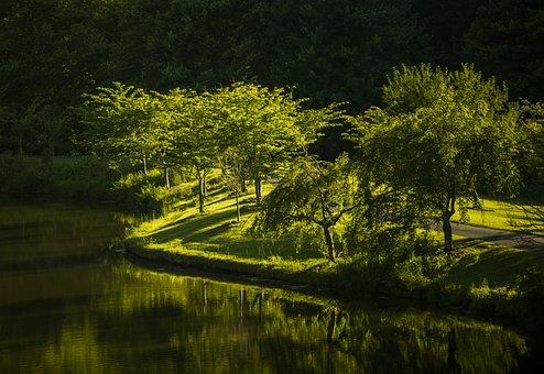 Park, Nature, Virginia, Landscape