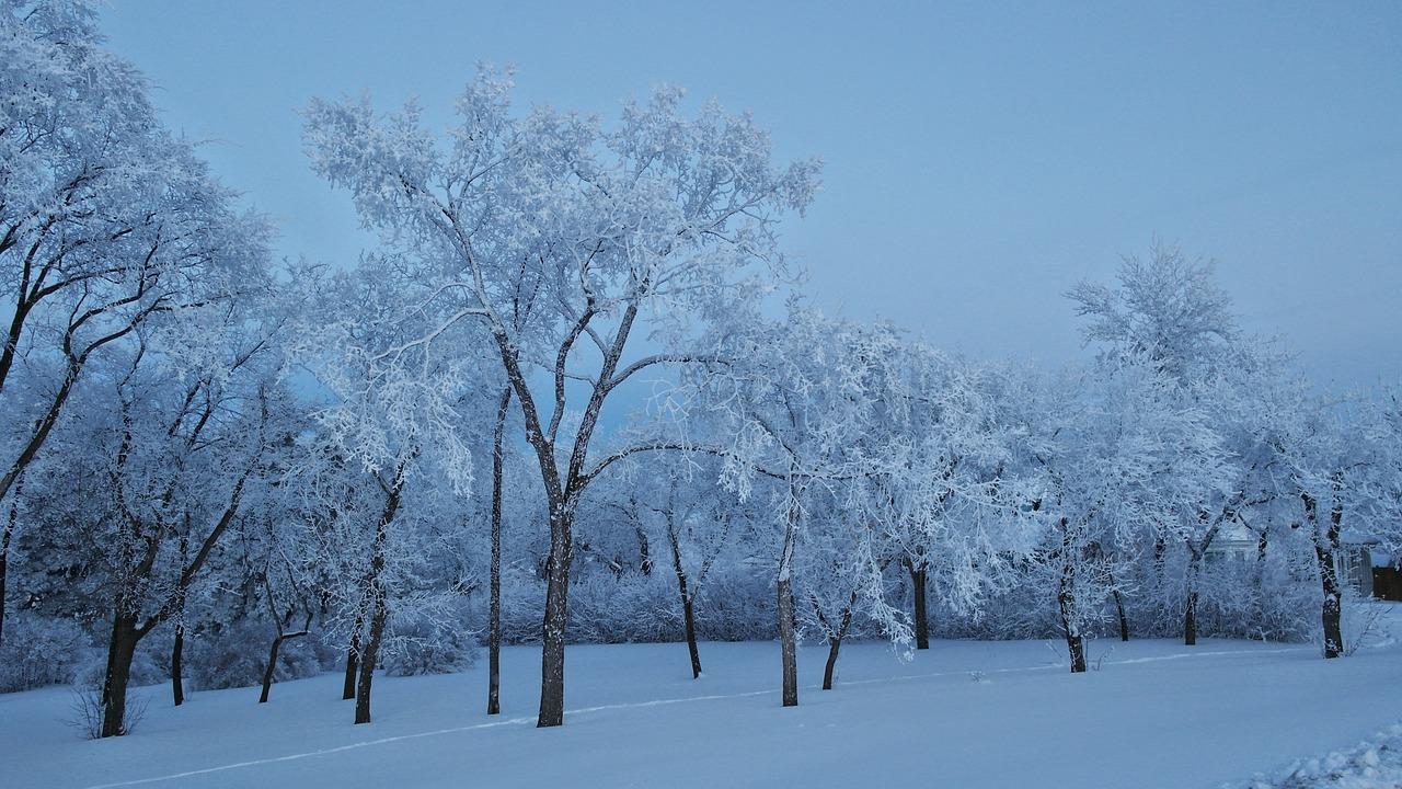 梦见下蓝色的雪 梦到天空下蓝色的雪