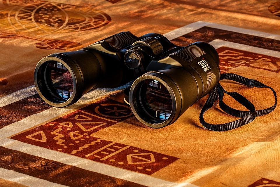 Binocoli, Birdwatching, Vetro Spia, Lo Spionaggio, Alba