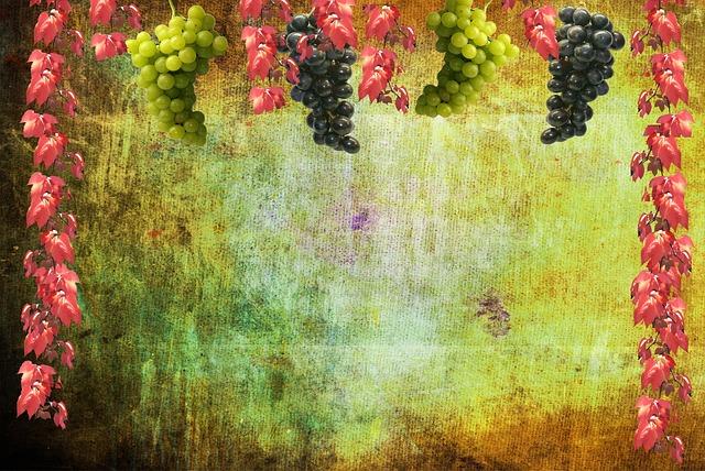 Free Photo Grapes Wine Autumn Background Free Image