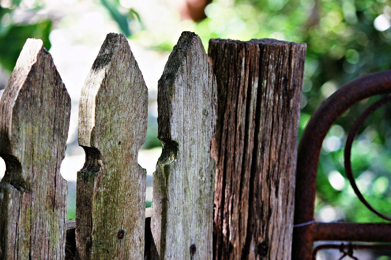 Старый деревянный забор в картинках