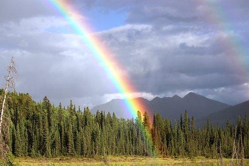 rainbow rain arch toad river rainbow color - Rainbow Picture