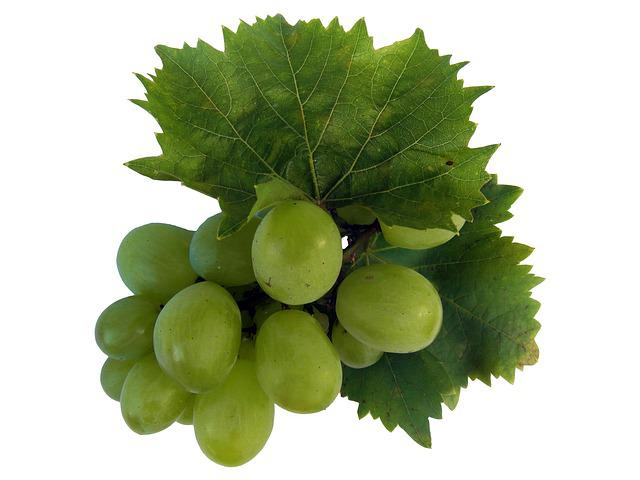 Free Photo Wine Wine Leaf Grape Free Image On Pixabay