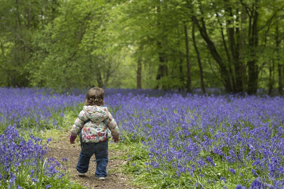 Для Малышей, Bluebells, Весна, Ребенок, Молодой, Синий