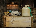 still life, moonshine