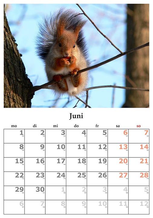 Calendario Mese Giugno.Calendario Mese Giugno Foto Gratis Su Pixabay