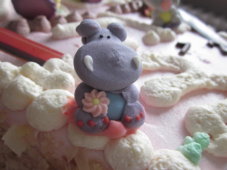 Hippopotamus Photo Birthday Cake Free Photo On Pixabay