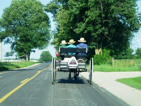 Amish, Carriage, Farm, Country, Farmland