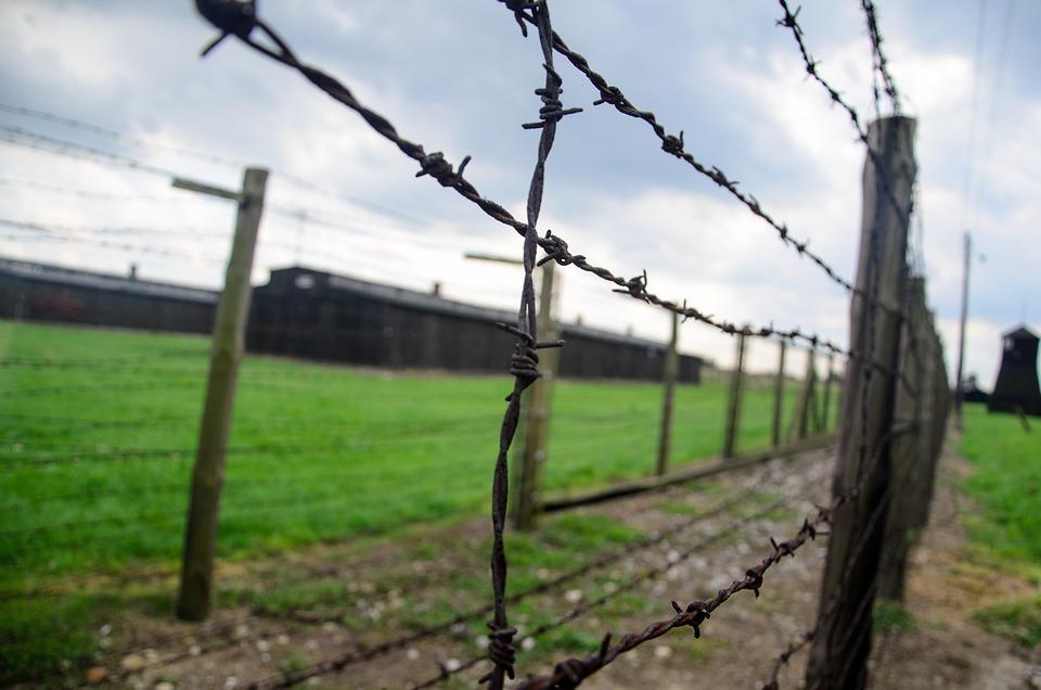 Free photo fence holocaust barbwire image on