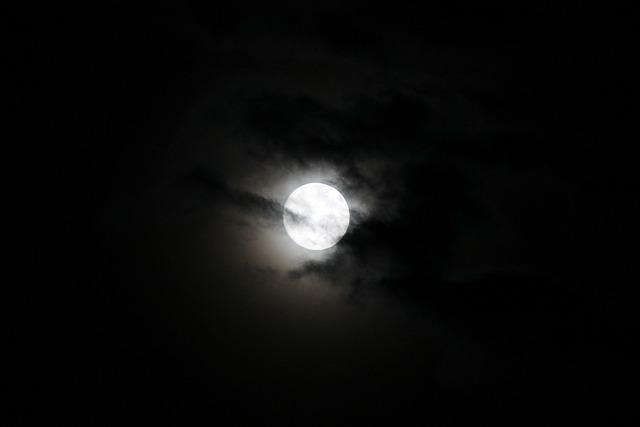 Free Photo Moon Night Moonlight Mood Free Image On