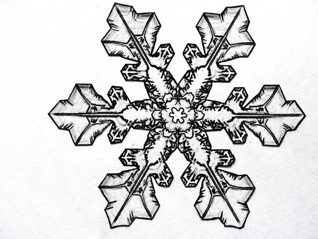 free illustration pencil drawing snowflake free image. Black Bedroom Furniture Sets. Home Design Ideas
