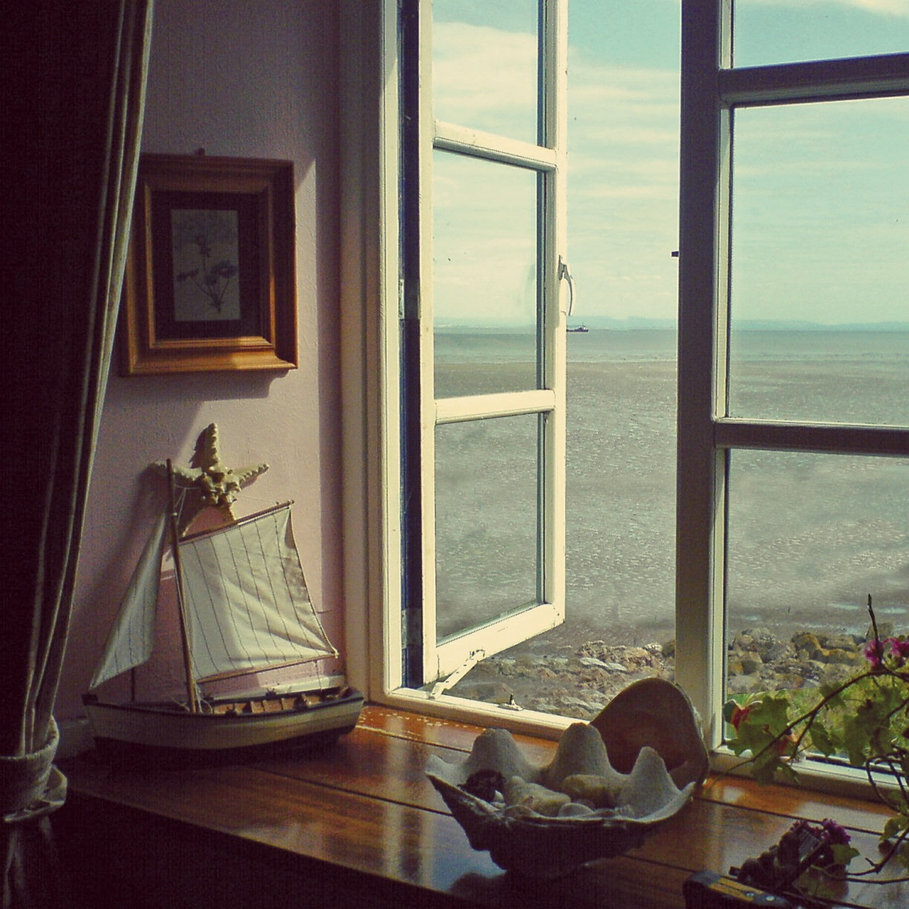 summary morning at the window by