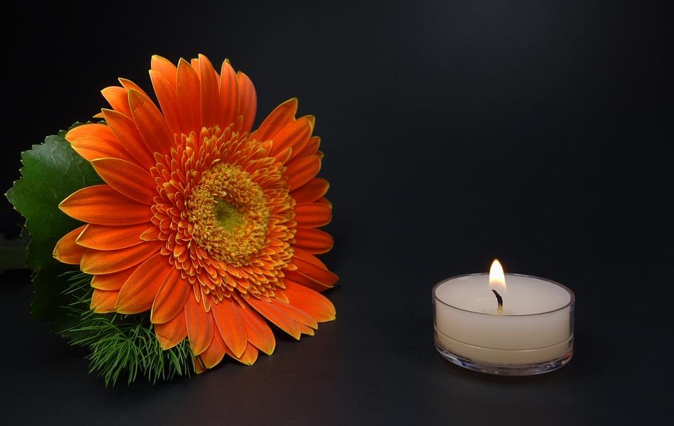 images romantiques fleurs