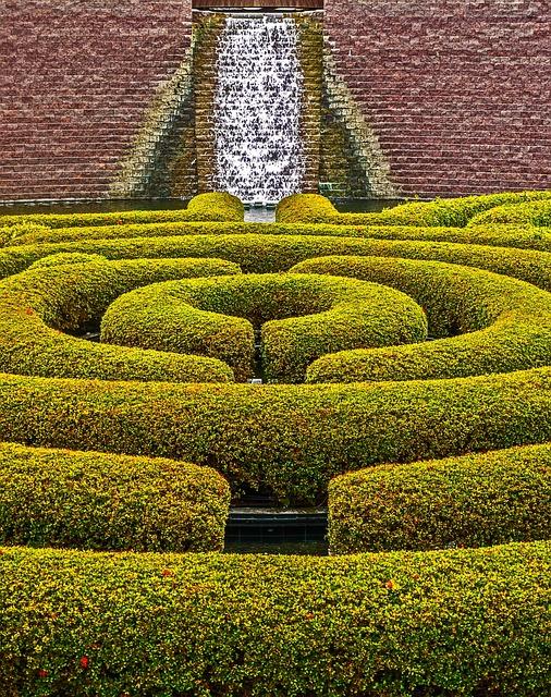 Photo gratuite haie am nagement paysager jardin image for Amenagement jardin haie