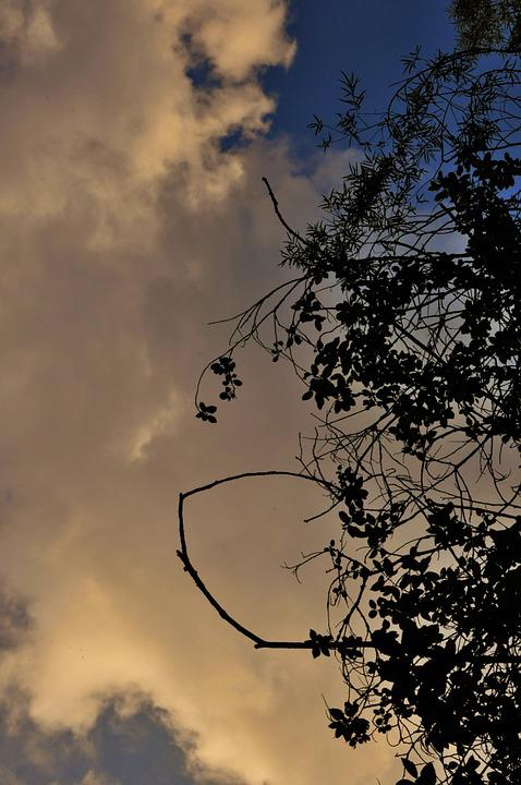 Free photo: Sunset, Dusk, Sky, Clouds, Cloudy - Free Image on ...