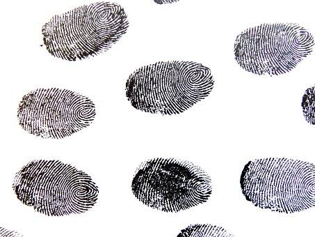 指紋, トレース, パターン, 探偵, コントラスト, 指, 指の溝