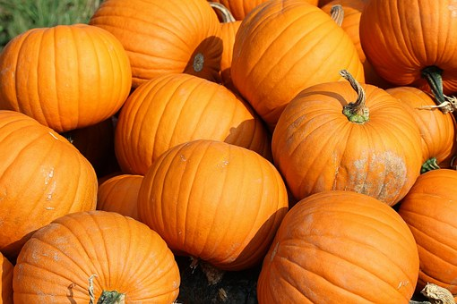 Pumpkins Yellow Vegetables Food Cucurbita