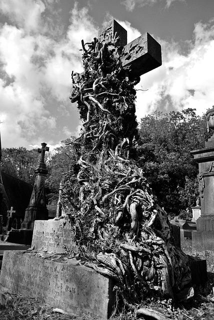 Free Photo Cemetery Burial Graveyard Death Free