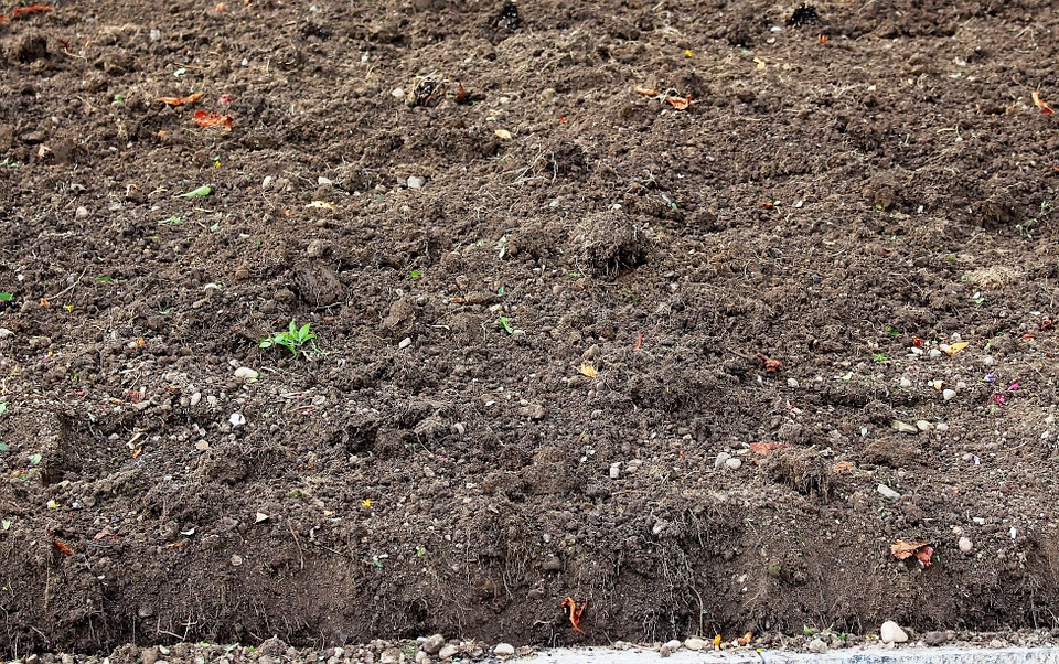 Free photo humus ground arable autumn free image on for Soil definition