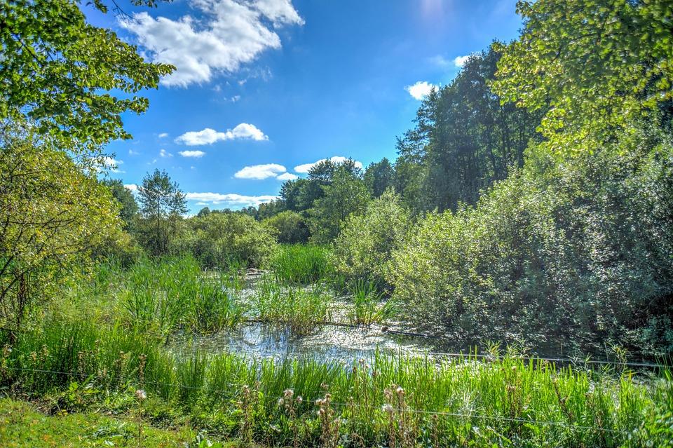 gratis foto stockholm zweden natuur   gratis afbeelding